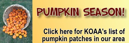 Pumpkin Patches in and around the Capital District