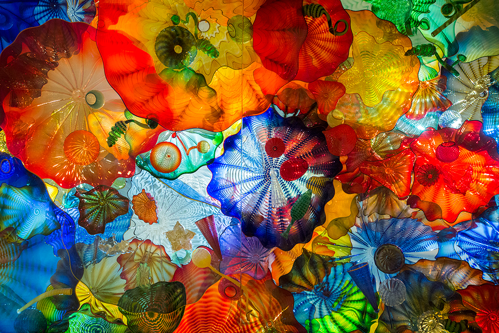 Homeschool Series The Glass Art Of Dale Chihuly Kids