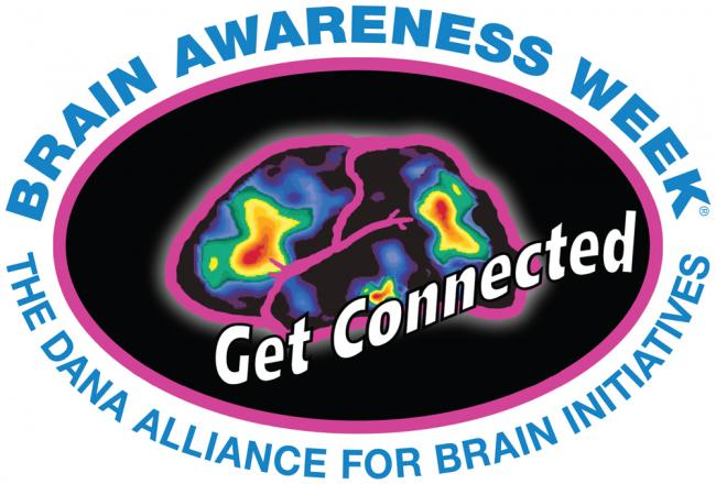 Brain Games | Kids Out and About Albany
